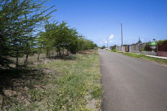 Arrestan a un joven por el asesinato de la joven madre en Guayama
