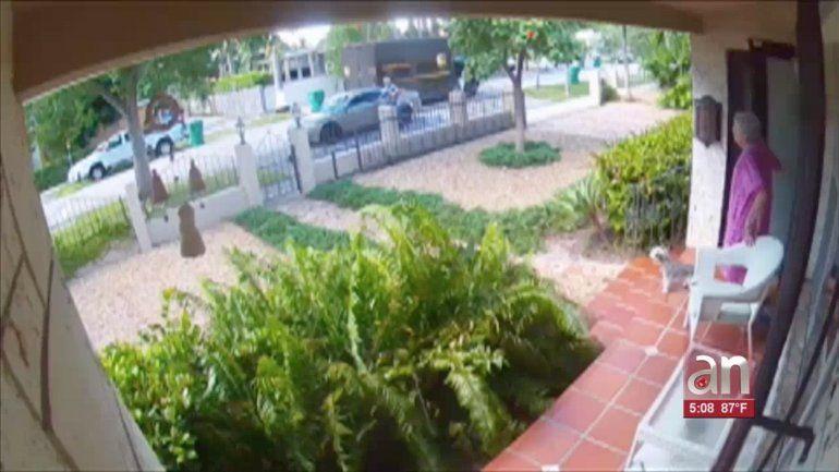 Le robaron su identidad para comprar un iPhone nuevo y luego esperaron la llegada del paquete frente a su propia casa
